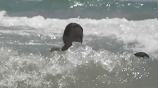 Nudist beach voyeur preys on naked young hotties Thumbnail